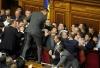 Україна прославилася на весь світ бійками в Раді