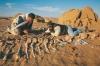 Законопроект № 2616 проти чорної археології